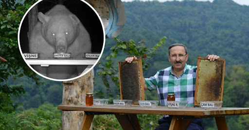 This Bee Farm Owner Has the Best and Most Unusual Honey Tasters! Read to Find Out More