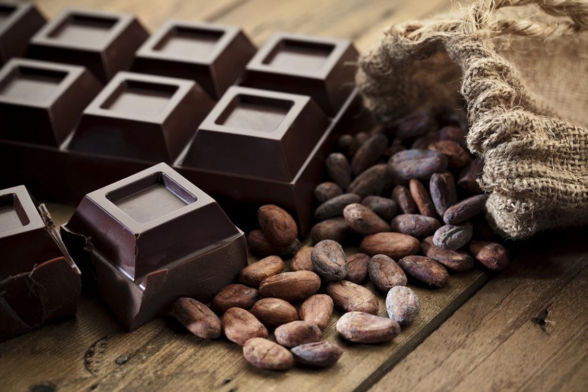 3 Honest And Important Reasons Why You Should Eat Chocolate Everyday